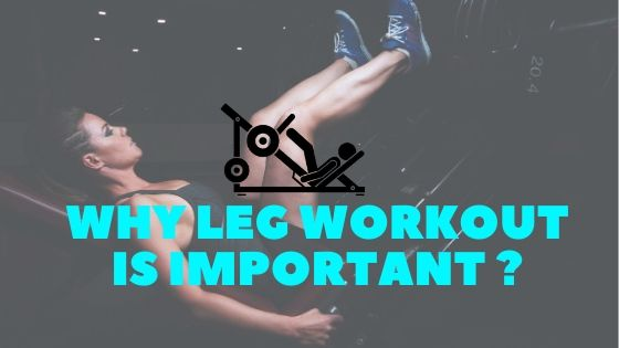 Why Leg Workout Is Important