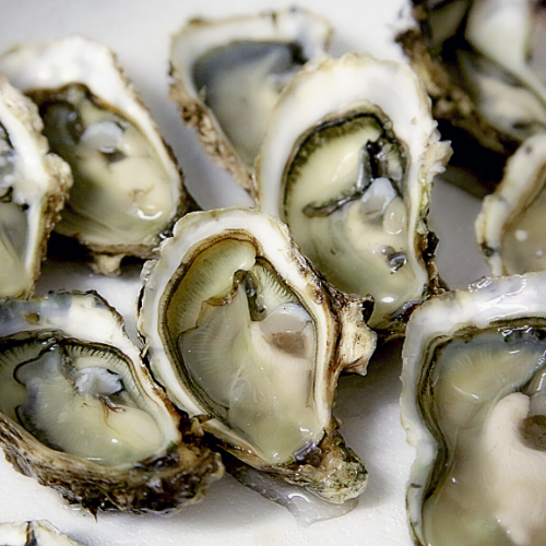 Food To Boost Testosterone-oysters