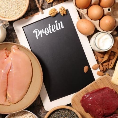nutrition to build muscle - protein