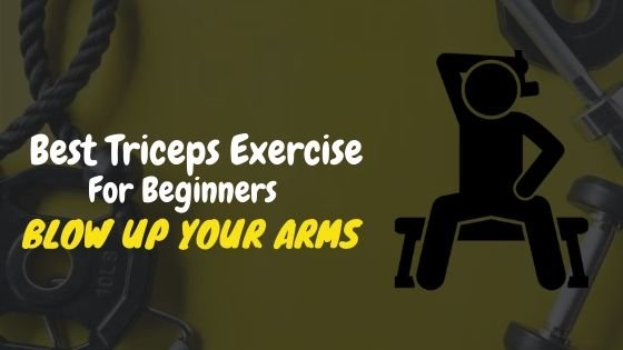 Best Triceps Exercise For Beginners